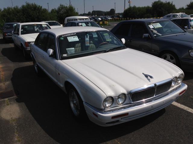 Jaguar Import